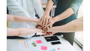 O Que é Um Sócio Investidor De Uma Empresa